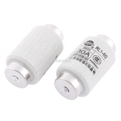 H● 2Pcs RL1-60 AC 380V 30A Metal Cap Screw Type Fuse Links