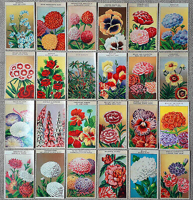24 Original vintage French seed packet labels FLOWERS dating to the 1920's