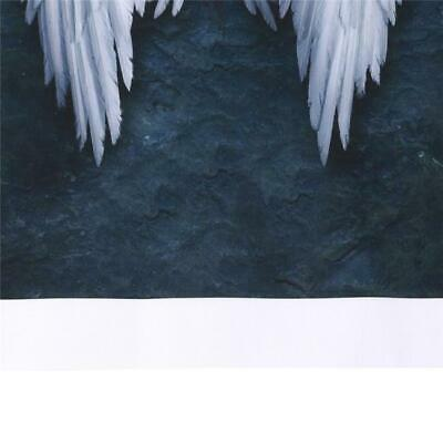 White Wings Angel Wings Oil Painting Hanging Pictures Home Wall Decor SL