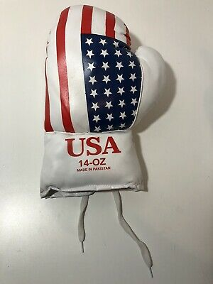 USA Flag 14oz Boxing Glove - Made In Pakistan