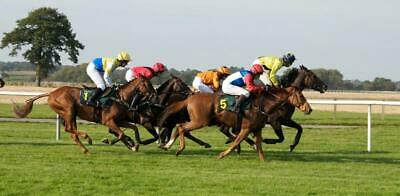 horse race backdrop for hire