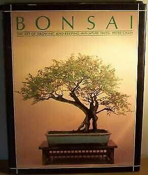Bonsai: The Art of Growing and Keeping Miniature Trees (A Quintet book), Peter C