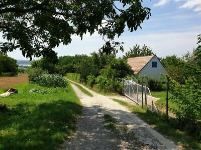 House for sale in rural Hungary Large Garden, Lake View, Fruit Trees