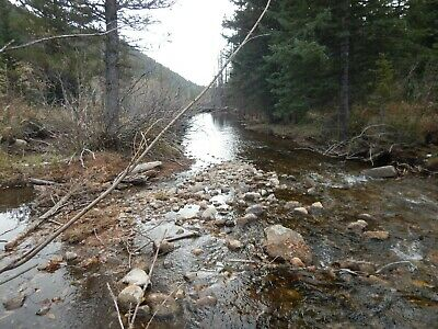 Colorado Mining Claim - Park County 20 Acres - 1,100' of Creek
