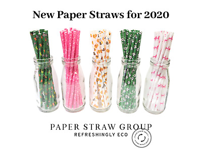 Kids party themed paper straws Uk made 6mm  50 / 250 / 500 /1000 Compostable ECO