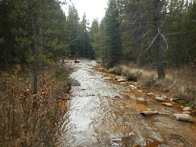 Colorado Mining Claim - Park County 20 Acres - 1,000' of Creek