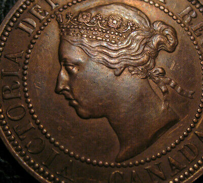Old Canadian Coins 1888 Canada  Large Cent Highgrade Better Date Choice Beauty