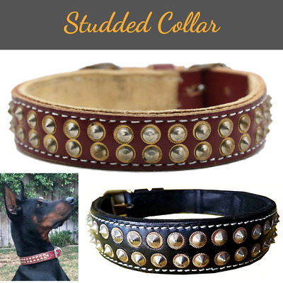 Spiked Studded Dog Collar Heavy Duty Pure Leather Pet Collar Bull Mastiff M/L/XL