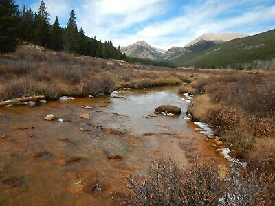 Colorado Mining Claim - Park County 20 Acres - 800' of Creek
