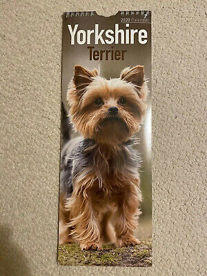 Yorkshire Terrier 2020 Official Slim Wall Calendar. New/sealed