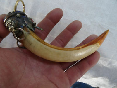 Wild Lion package Wild Boars Tooth Hog talismanic Pendant To ward off bad luck