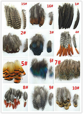 Wholesale 20-100pcs Beatiful 4-20cm/2-8inches Pheasant Tail Feathers diy