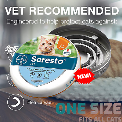 Bayer Seresto Flea Collar for Cats 8 Months and Tick Prevention US FREE SHIP