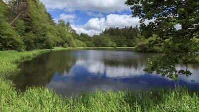 4 Acres Land Wales Lampeter. Surrounding A Lake