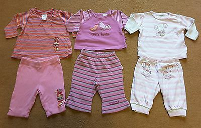 Next, Pumpkin Patch Baby Girl Outfit Top & Tousers Set Bundle of Three 0-3months