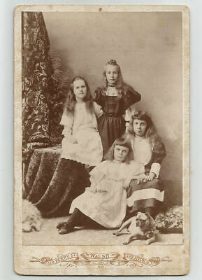 Cabinet Card 4 Children Girls with Pug Dog Portrait Antique Photo Trenton NJ