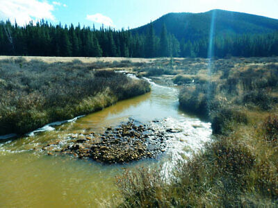 Colorado Mining Claim - Park County 20 Acres - G. Camp