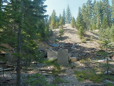 Monarch Mine Hardrock Gold Mining Claim Historic 20 Acres Sierra County, CA, NR!