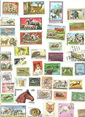 100 Mostly Different  Animal Postage Stamps from World Wide.