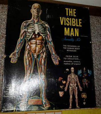 Vintage Renwal The Visible Man Science Assembly Project Kit #800:498