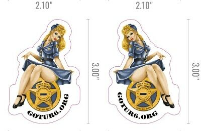 WWII Bomber Pinup Girl Waterslide Decal Sticker for Guitars /& Much More SA702