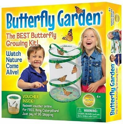Insect Lore Butterfly Garden (Packag May Vary)