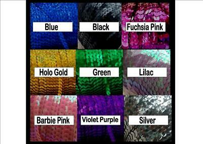 6mm Width 5m AB Plated Sequin Trim Approx Various Colours Available
