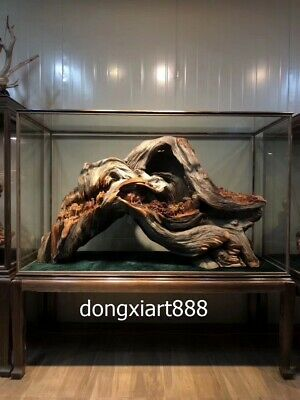 160 cm Chinese Thuja sutchuenensis tree root wood Legend of silk road sculpture