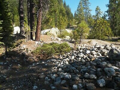 Downieville, CA Gold Mining Claim 40 Acres Rich Hydraulic Minesite Large Scale!