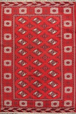 Vintage All-Over Geometric Balouch Afghan Oriental Area Rug Wool Hand-Made 7x10