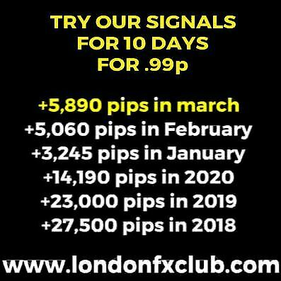 Forex Signals VIP Telegram link 10 day trial for .99p   The Real VIP experience