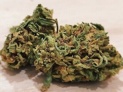 Canapa L. White Widow Top Quality, Bio, Light, INDOOR Lot.143