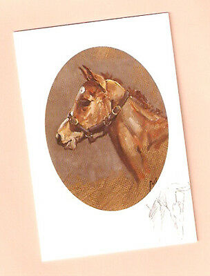 Horse Notecards Note Card The Young Aristocrat by Malcolm Coward Pack of 5 LAST!