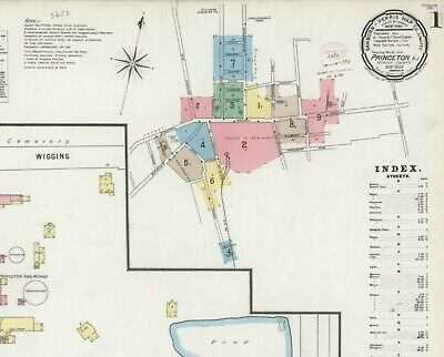 Princeton,  New York~Sanborn Map©sheet ~20 maps full color