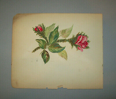 Antique Vtg 1800s Folk Art Hand Painted Watercolor Painting of a Rose and Bud