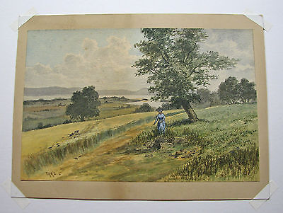 RARE - FAAS Original Watercolor late 19th Century  Early 20th Century Antique