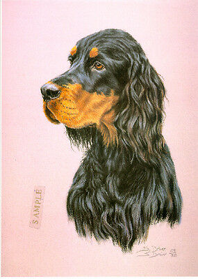 Gordon Setter Head Study Limited Edition Art Print by UK Artist Sue Driver #3
