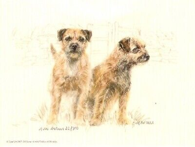 Border Terrier Limited Edition Print by UK Artist Gill Evans We're Out!