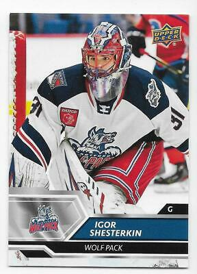 19/20 UPPER DECK AHL BASE Hockey (#1-90) U-Pick From List