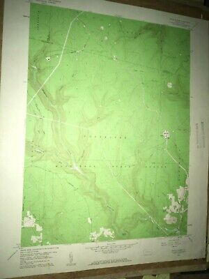 Devils Elbow Pa. Clearfield USGS Topographical Geological Survey Quadrangle Map