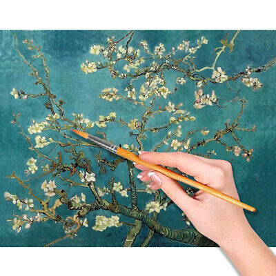 DIY Paint by Numbers for Beginner - Apricot Blossom By Van Gogh 15.7x19.6inch