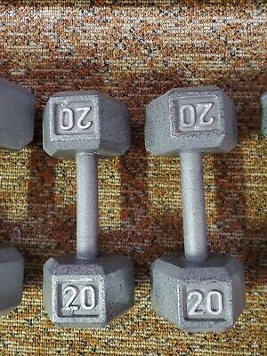 20 lb Dumbells Pair of 2 Hexagonal Cast Iron Free Weight Silver 40 lb Total