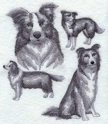 Border Collie Sketch Personalized Sweatshirt  Embroidered ALL SIZES