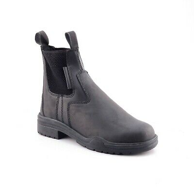 Horse Riding Leather Steel Toe
