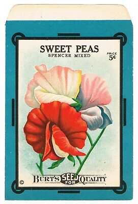 VINTAGE SEED PACKET SUMMER CYPRESS FLOWERS ADVERTISING GENERAL STORE ORIGINAL