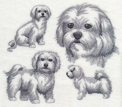 Maltese Sketch Personalized Sweatshirt  Embroidered ALL SIZES