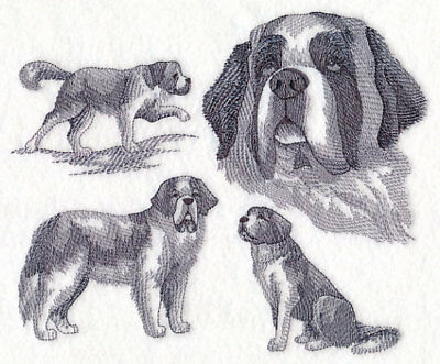 St. Bernard Sketch Personalized Sweatshirt  Embroidered ALL SIZES