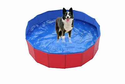 Summer new Pet Bath Dog Swimming Pool Foldable Bath Paddling Pool Puppy Bathtub