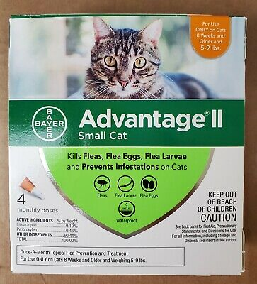 NEW BAYER Advantage II SMALL CAT 4 Monthly Doses 5-9lbs