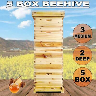 5 Brood Boxes Langstroth 10-Frame Hive Frame/Bee Hive Frame/Beehive W/Metal Roof